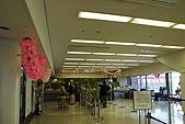 關西の百選春櫻饗宴 DAY1 京都 080406:JR 關空駅 TOURIST CENTER