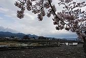 關西の百選春櫻饗宴 DAY3 京都 080408:嵐山渡月橋