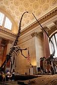 美國紐約舊金山 DAY7 自然歷史博物館+中央公園:013.jpg