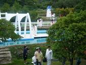 大屯花卉農場20121104:大屯花卉農場 017.jpg