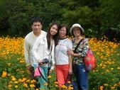 大屯花卉農場20121104:大屯花卉農場 026.jpg