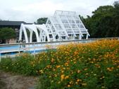 大屯花卉農場20121104:大屯花卉農場 027.jpg