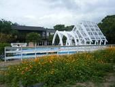 大屯花卉農場20121104:大屯花卉農場 029.jpg