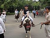 我:六福村騎馬2