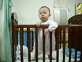 2009喬丹學校生活:廷-02.19-1.jpg