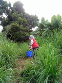 自由馨正種植專區:20110821採果天倫樂 022.jpg