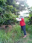 自由馨正種植專區:20110821採果天倫樂 023.jpg