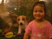 20100623禾青回台灣:IMGP4181.JPG