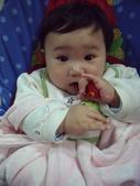 農曆年的新春記事:20120125 (31).JPG