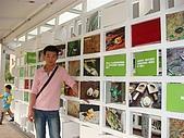 20081228鷹取Paper Dome紙教堂,埔里花卉嘉年:DSC06606.JPG