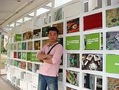 20081228鷹取Paper Dome紙教堂,埔里花卉嘉年:DSC06608.JPG