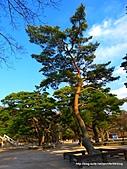 2011031516古都慶州一日遊:P1080102.JPG