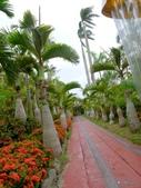 20130821沖繩風雨艷陽第五日:P1740109.JPG