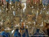 20110713北海道旭川市旭山動物園:P1170160.JPG