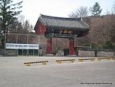 2011031516古都慶州一日遊:IMG_3111.jpg