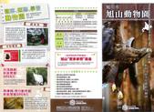 20110713北海道旭川市旭山動物園:Top-1.jpg
