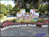 20200316台北杜鵑花季:萬花筒1大安杜鵑花.jpg