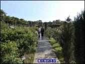 20191110台北新生公園台北玫瑰園秋季玫瑰展:萬花筒78玫瑰.jpg