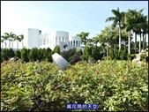 20191110台北新生公園台北玫瑰園秋季玫瑰展:萬花筒4玫瑰.jpg