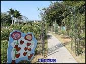 20191110台北新生公園台北玫瑰園秋季玫瑰展:萬花筒11玫瑰.jpg