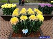 20191204台北士林官邸菊展:萬花筒7士林官邸菊展.jpg