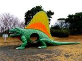 20150207日本鹿兒島櫻島火山一日遊:P1950406.JPG