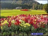 20200226南投九族文化村櫻花季:萬花筒72A南投.jpg