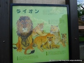 20110713北海道旭川市旭山動物園:P1170284.JPG
