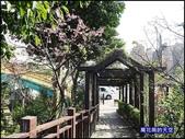 20200212台北內湖樂活夜櫻季:萬花筒4樂活公園.jpg