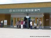 20110713北海道旭川市旭山動物園:P1160869.JPG
