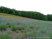 20110715彩香之里:P1180681.JPG