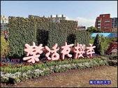 20200212台北內湖樂活夜櫻季:萬花筒6櫻花.jpg