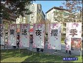 20200212台北內湖樂活夜櫻季:萬花筒8櫻花.jpg