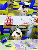 20160619雲林虎尾ii Cake蛋糕毛巾咖啡館:20160619毛巾工廠5.jpg