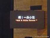 20110411舞蝶館~優人神鼓之花蕊渡河:P1100453.JPG