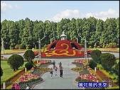 20200226南投九族文化村櫻花季:萬花筒74A南投.jpg