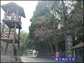 20200226南投九族文化村櫻花季:萬花筒80A南投.jpg