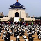 20140319熊貓世界之旅中正紀念堂站:相簿封面