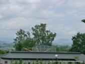 20110713北海道旭川市旭山動物園:P1160878.JPG