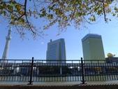 20121118東京晴空塔SKY TREE:P1550422.JPG