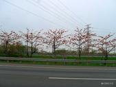 20140402雲林一日遊:P1810521.JPG