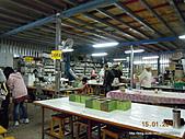20110115新竹製燭買包一日遊:DSCN5842.JPG