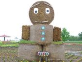20110714四季彩之丘:P1180136.JPG