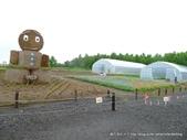 20110714四季彩之丘:P1180137.JPG