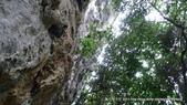 20110523社頭自然公園:P1130327.jpg