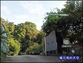 20200705桃園大溪南法玫瑰園:萬花筒J4番鴨.jpg