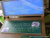 20110713北海道旭川市旭山動物園:P1170481.JPG
