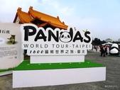 20140319熊貓世界之旅中正紀念堂站:P1810437.JPG