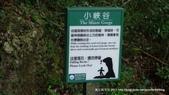 20110523社頭自然公園:P1130331.jpg