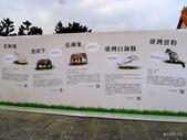 20140319熊貓世界之旅中正紀念堂站:P1810438.JPG